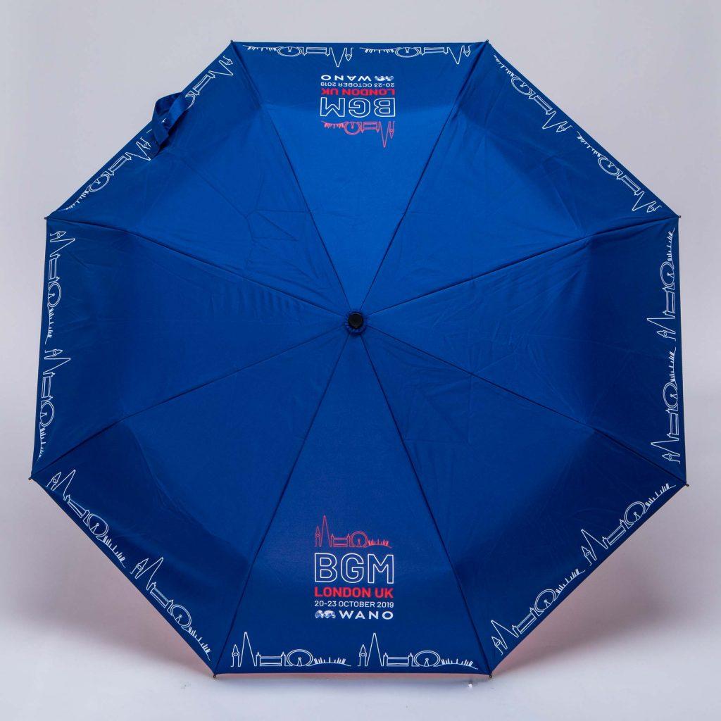 blue open umbrella influencers of consumer behaviour